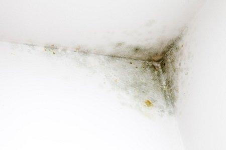cách xử lý vết nứt trần do ảnh hưởng của thời tiết
