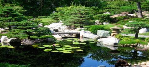 Khu vườn phong cách Nhật Bản